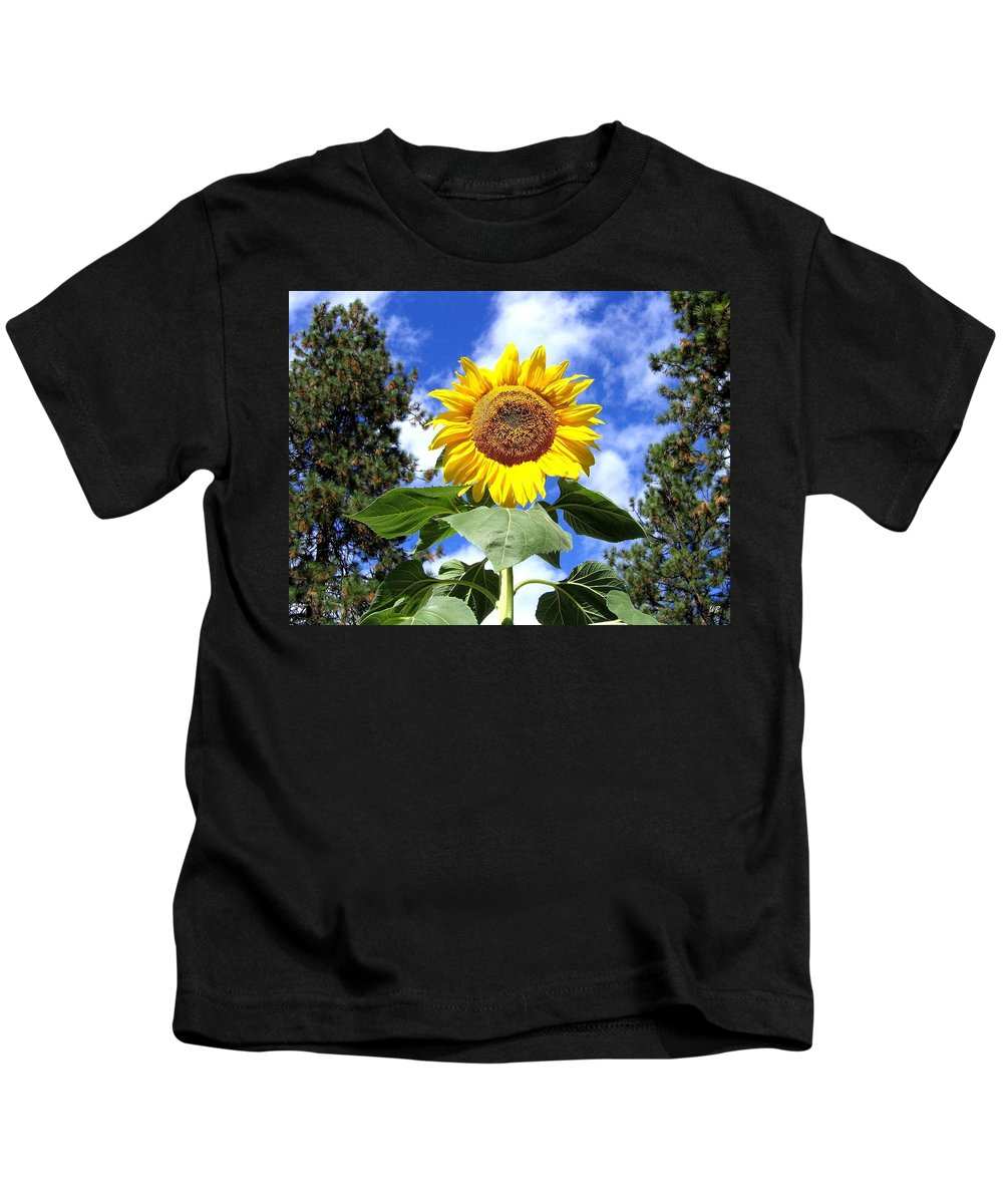 Sunflower Kids T-Shirt featuring the photograph Tall And Sunny by Will Borden