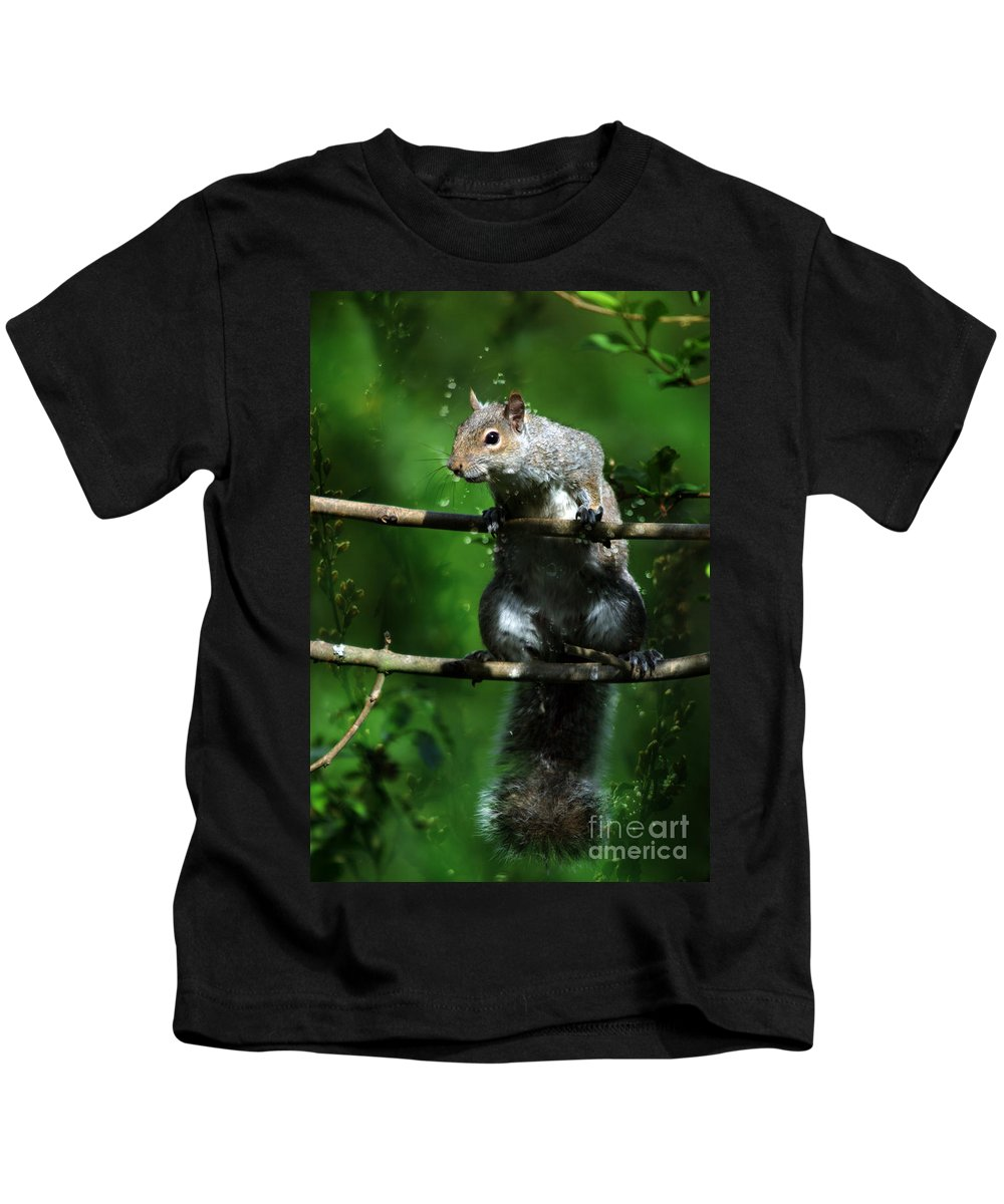 Squirrel Kids T-Shirt featuring the photograph The Squirrel From Fairyland by Angel Tarantella