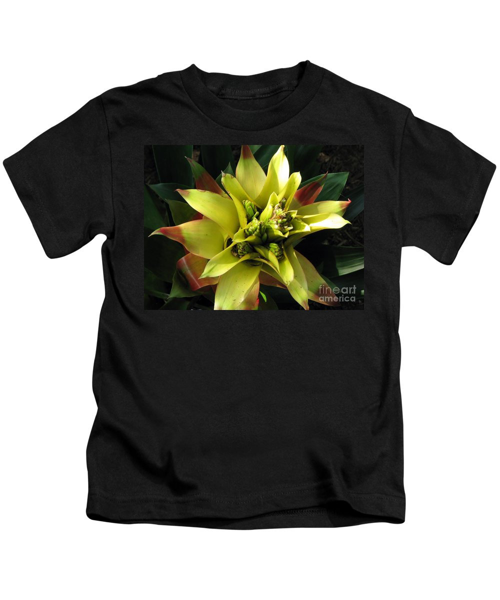 Tropical Kids T-Shirt featuring the photograph Tropical by Amanda Barcon