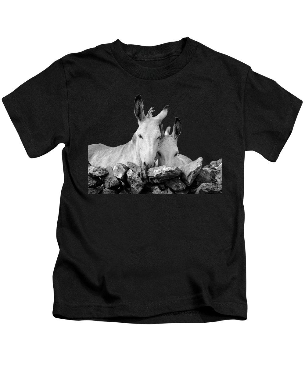Donkey Kids T-Shirts