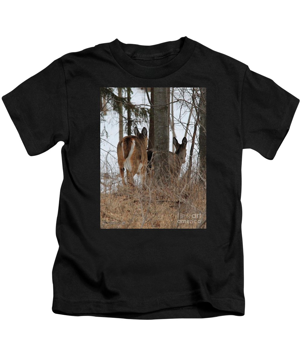 Mccombie Kids T-Shirt featuring the painting White-tailed Deer by J McCombie