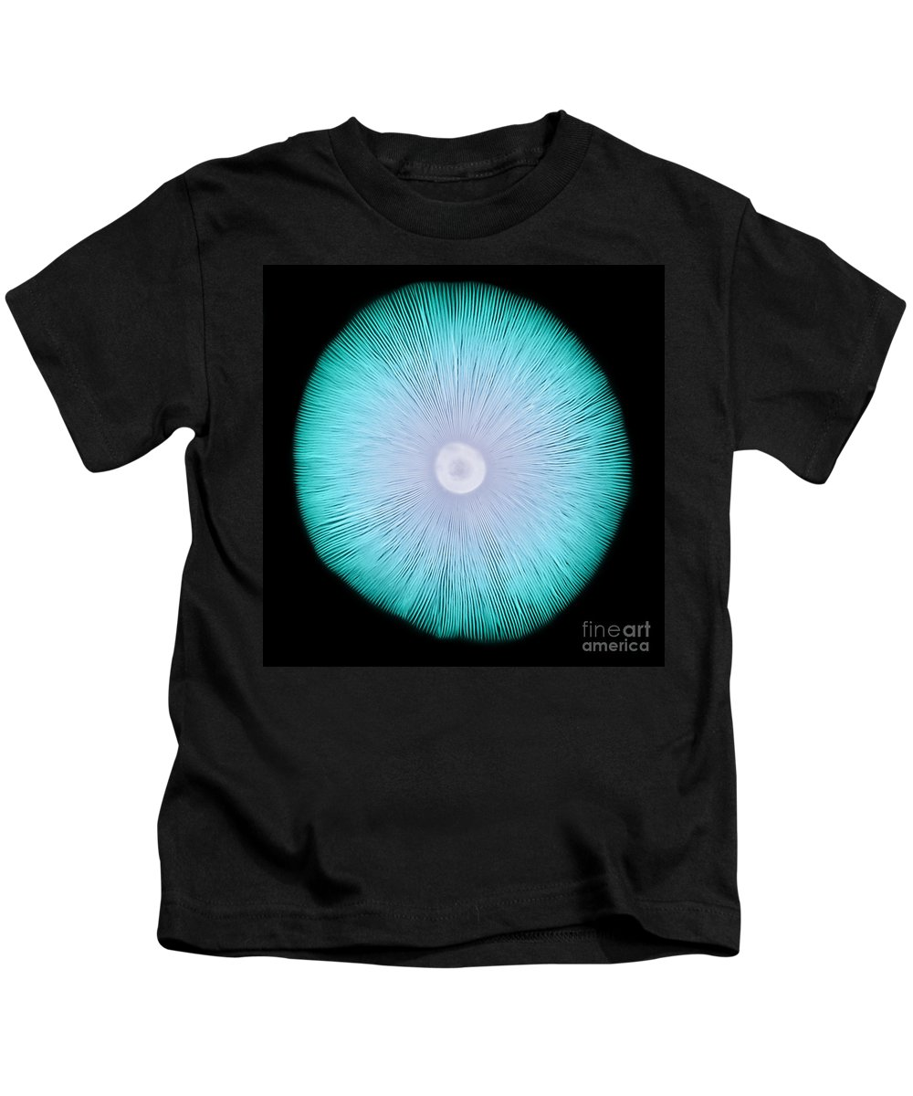 Amanita Kids T-Shirt featuring the photograph X-ray Of A Mushroom by Ted Kinsman
