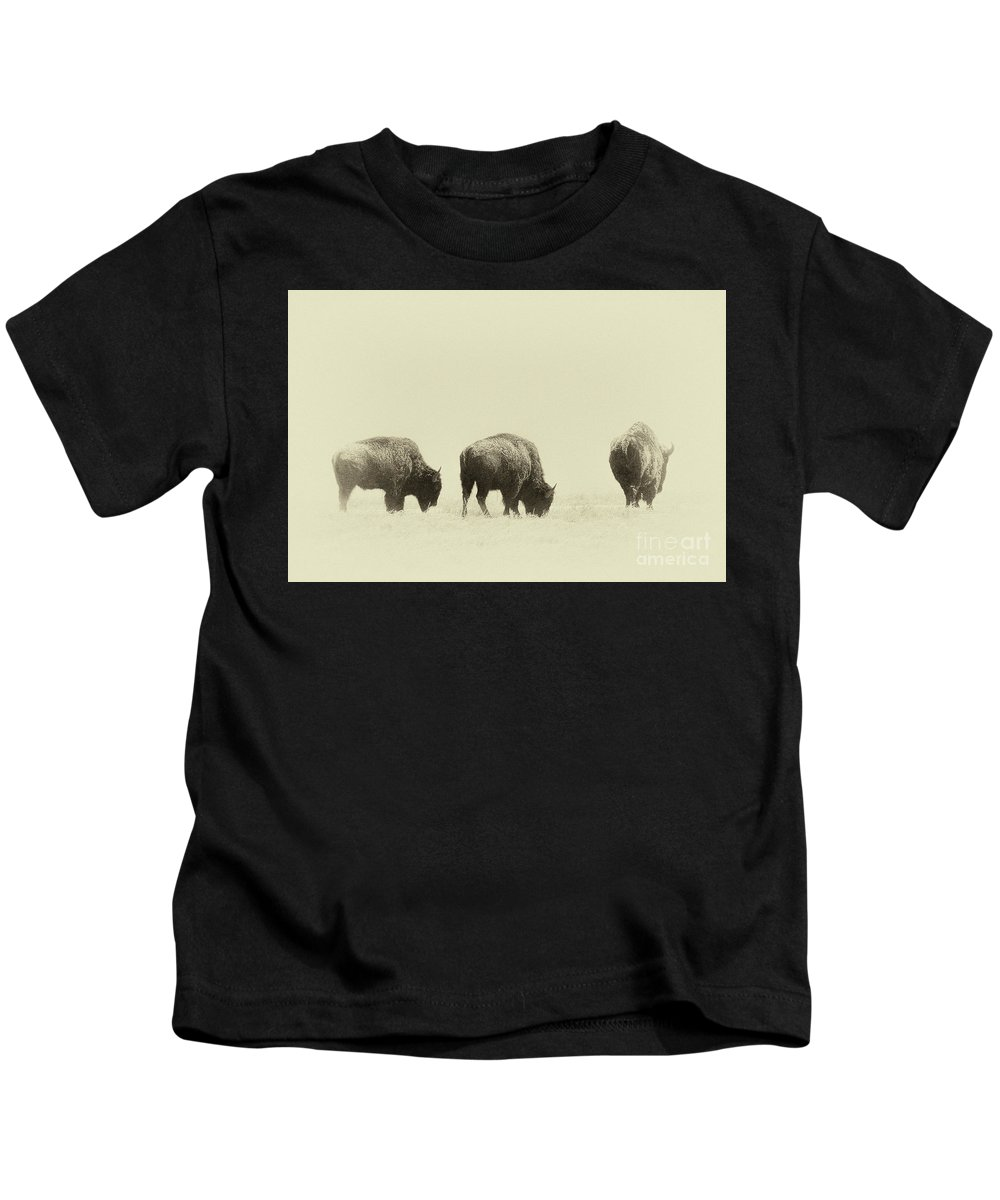 Buffalo Kids T-Shirt featuring the photograph Yesterday's Gone by Jim Garrison