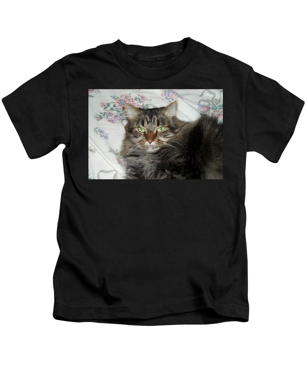 Maine Coon Kids T-Shirt featuring the photograph Maine Coon Cat by Michael Munster