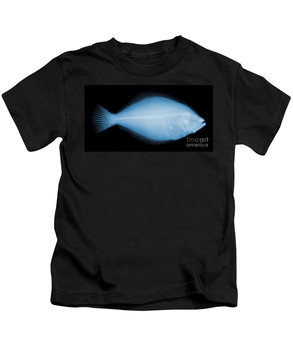 Nature Kids T-Shirt featuring the photograph Flounder Fish, X-ray by Ted Kinsman