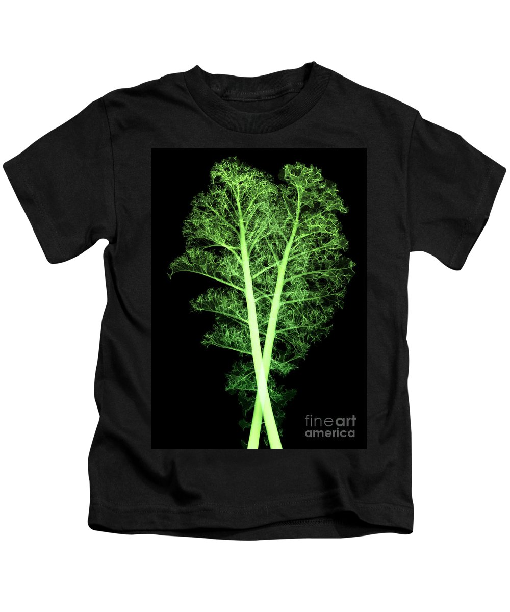 Science Kids T-Shirt featuring the photograph Kale, Brassica Oleracea, X-ray by Ted Kinsman