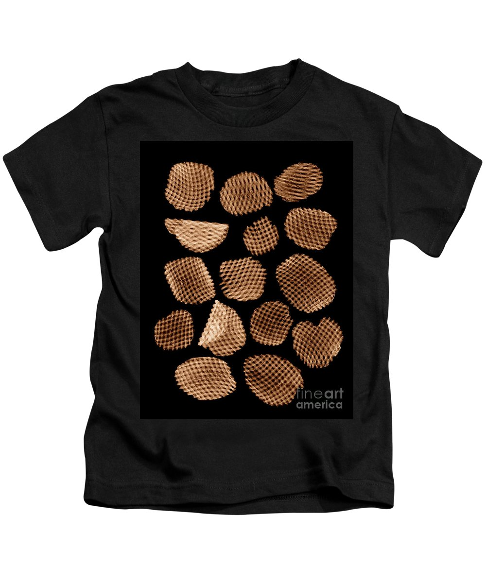 Science Kids T-Shirt featuring the photograph Potato Chips, X-ray by Ted Kinsman
