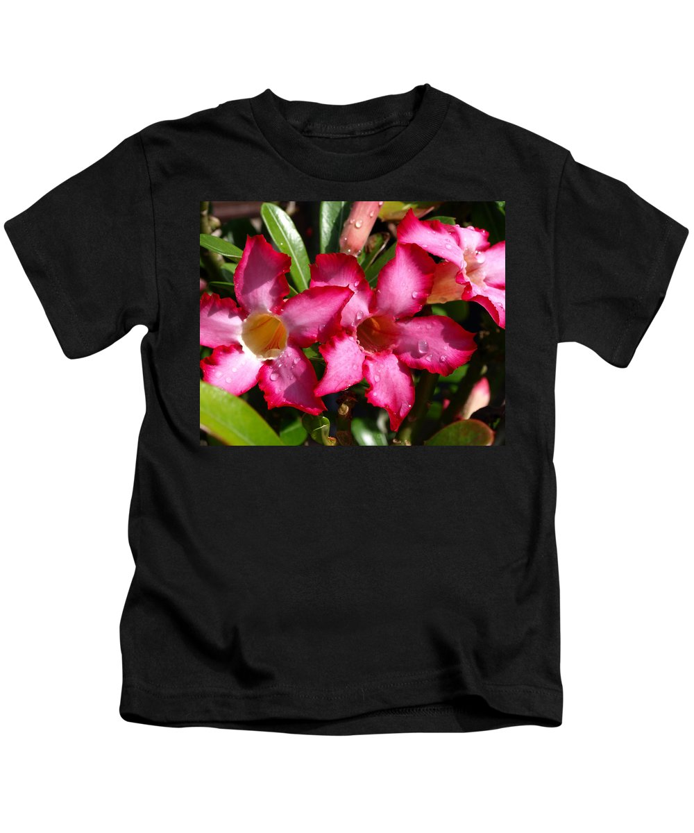 Desert Rose; Desert; Rose; Red; Pink; Flower; Bush; Garden; Florida; Plant; Adenium; Obesum; Africa; Kids T-Shirt featuring the photograph Desert Rose by Allan Hughes