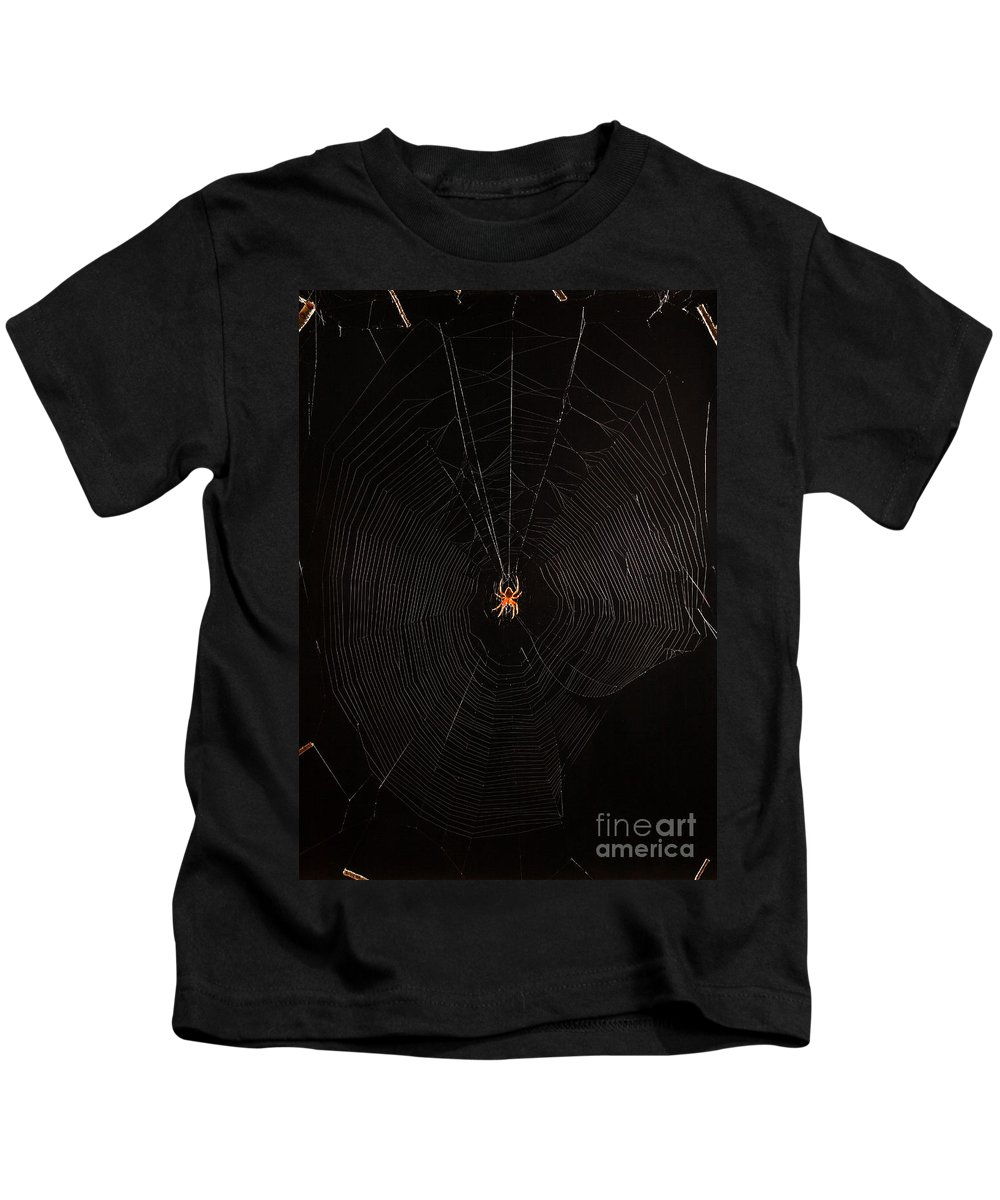 Animal Kids T-Shirt featuring the photograph Marbled Orb Weaver Spider by Ted Kinsman