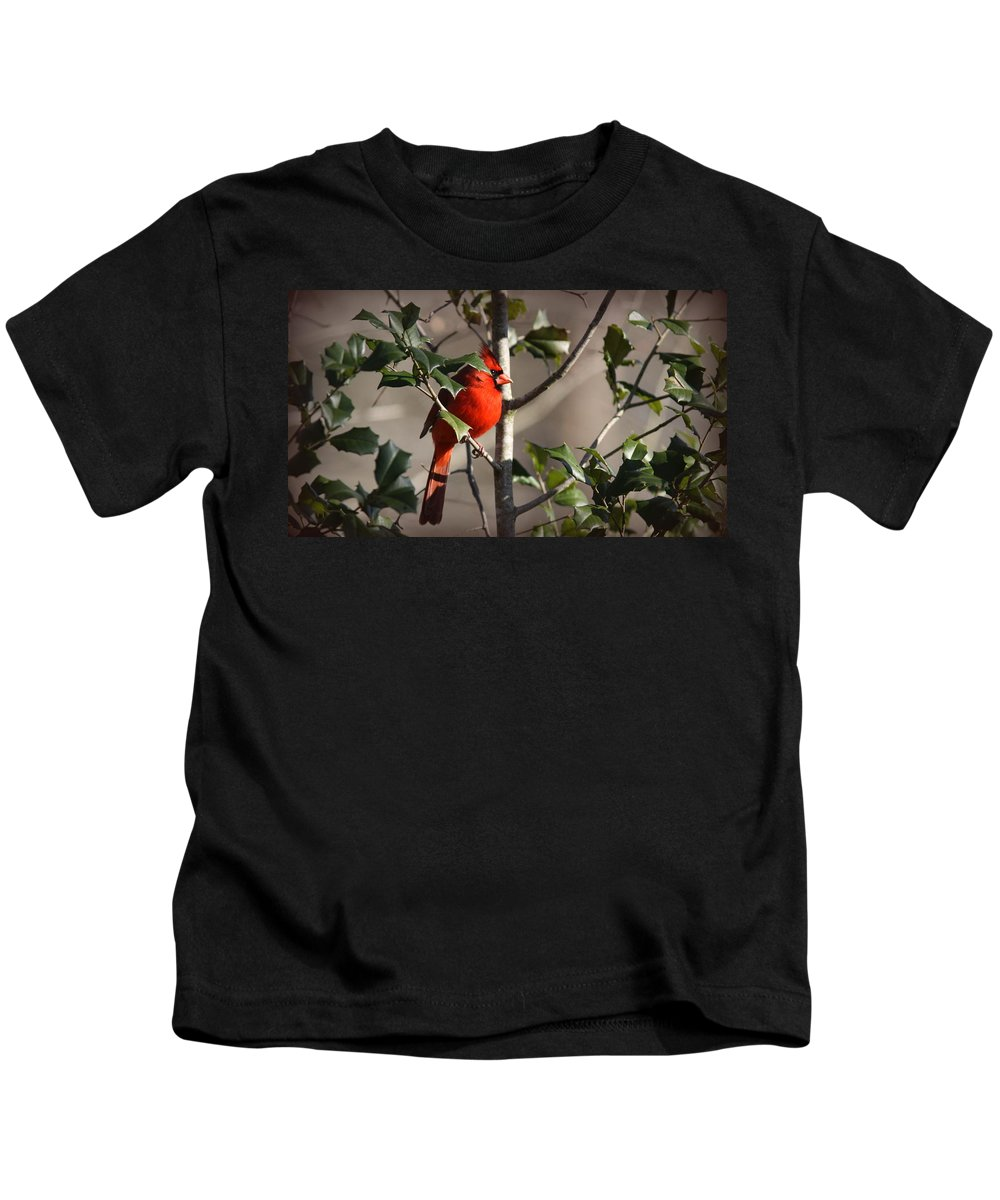 Northern Cardinal Kids T-Shirt featuring the photograph Img_0001 - Northern Cardinal by Travis Truelove
