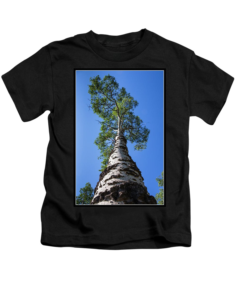 Kids T-Shirt featuring the photograph 7 by J and j Imagery