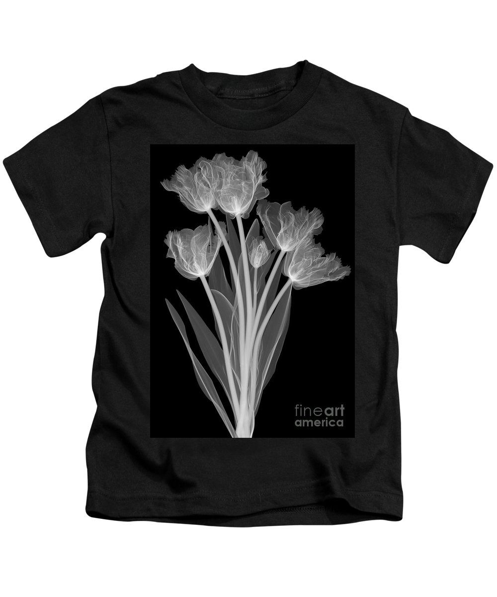 Science Kids T-Shirt featuring the photograph Tulips, X-ray by Ted Kinsman
