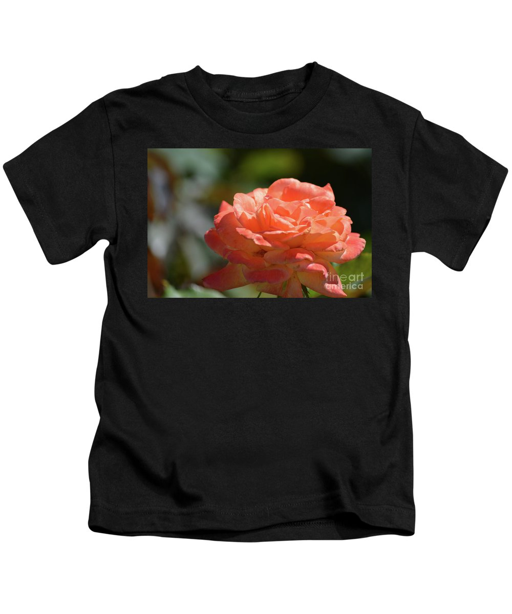 Beautiful Rose Kids T-Shirt featuring the photograph Beautiful Rose by Ruth Housley