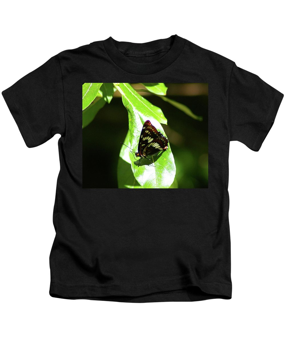Butterfly Kids T-Shirt featuring the photograph A Butterfly In The Sun by Jeff Swan
