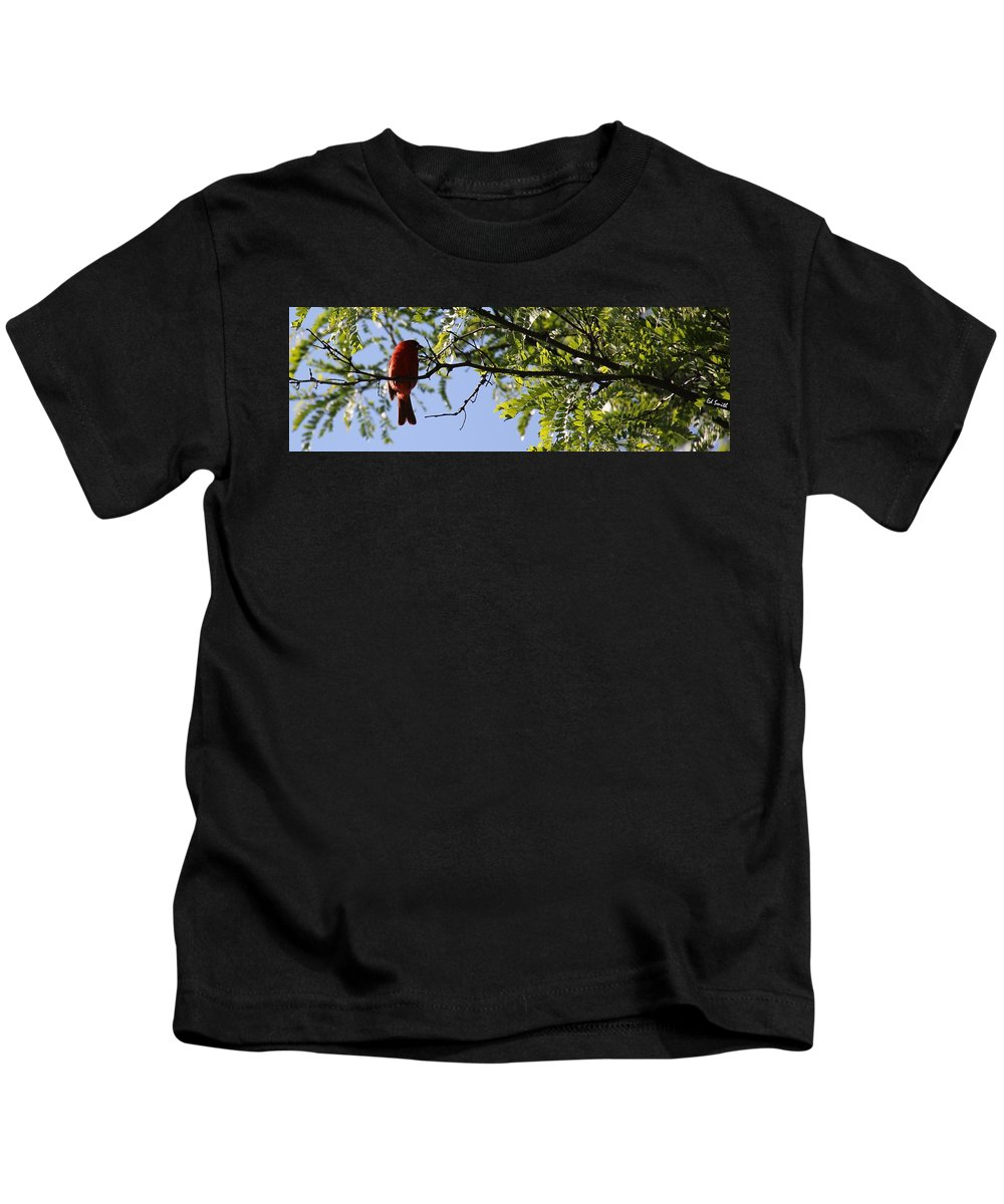 A Card In All Zen Kids T-Shirt featuring the photograph A Card In All Zen by Ed Smith