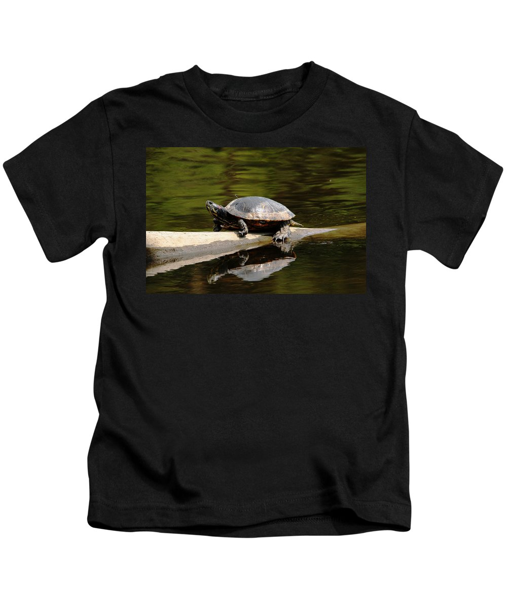 Turtle Kids T-Shirt featuring the photograph A Painted Reflection by Debbie Oppermann