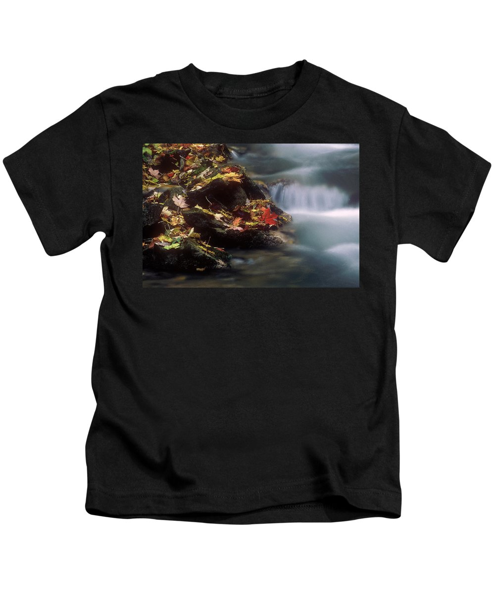 River Kids T-Shirt featuring the photograph A Special Place by D'Arcy Evans