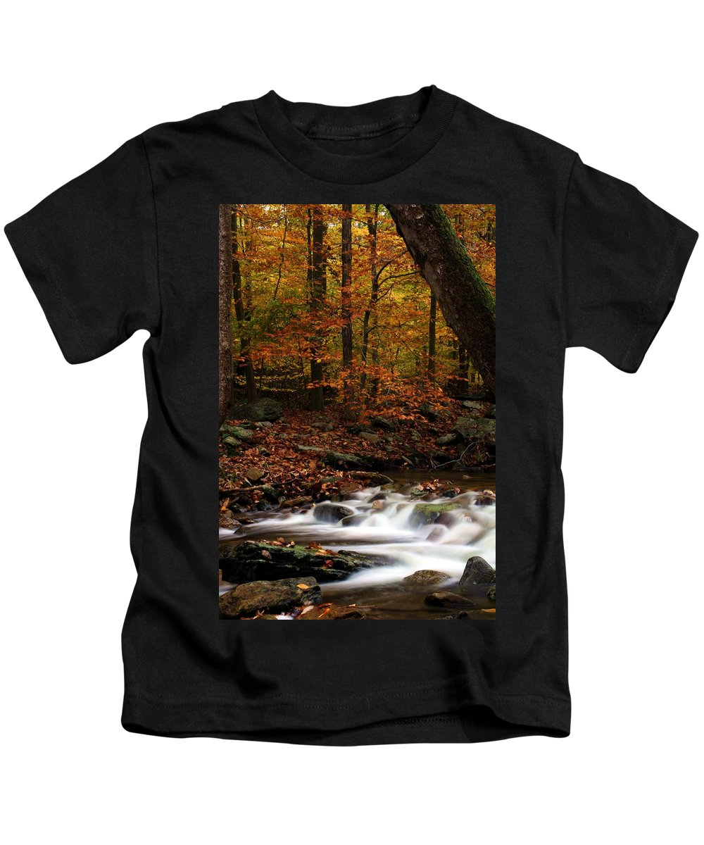 Autumn Kids T-Shirt featuring the photograph A Spectacle by Mitch Cat