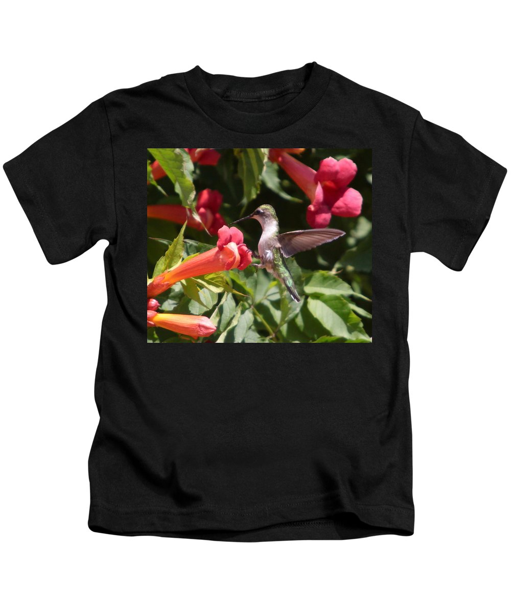 Humming Bird Kids T-Shirt featuring the photograph A Sweet Tooth-2 by Robert Pearson