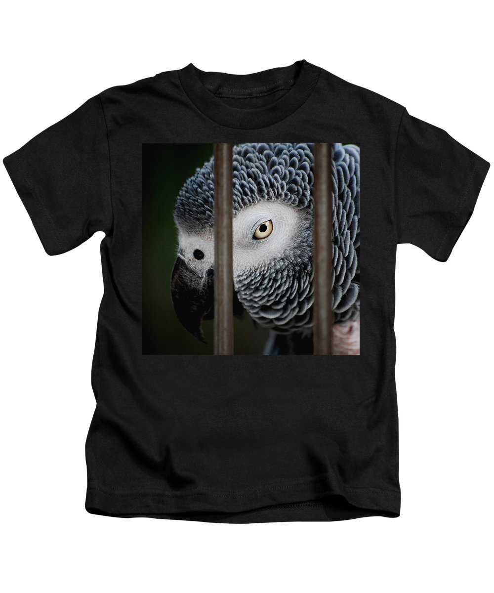 African Grey Kids T-Shirt featuring the photograph African Grey by Robert Meanor