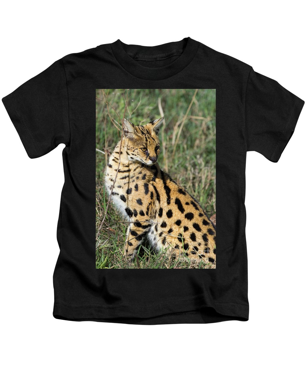 Serval Kids T-Shirt featuring the photograph African Serval In Ngorongoro Conservation Area by RicardMN Photography