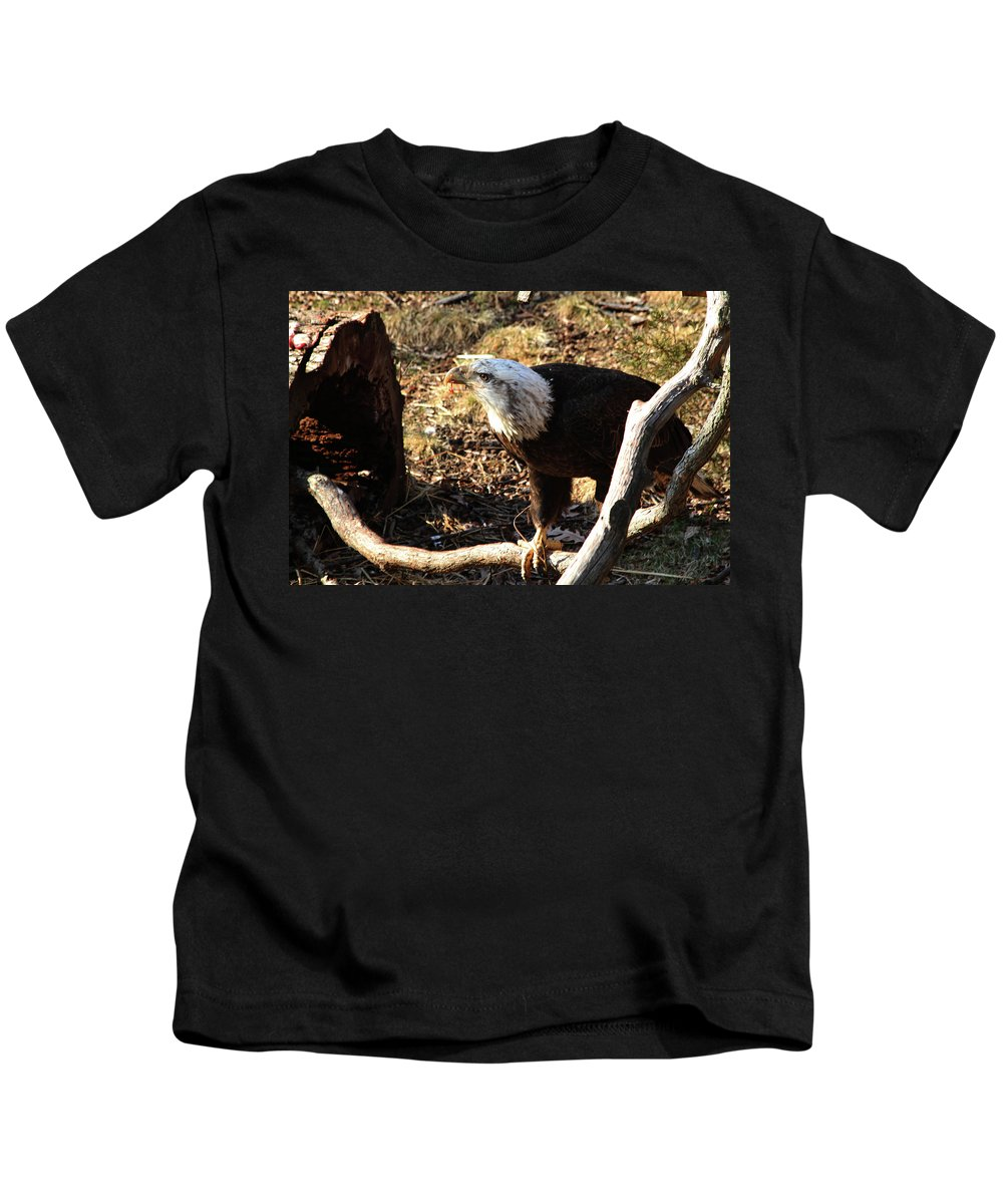 Eagle Kids T-Shirt featuring the photograph After Breakfast by Karol Livote