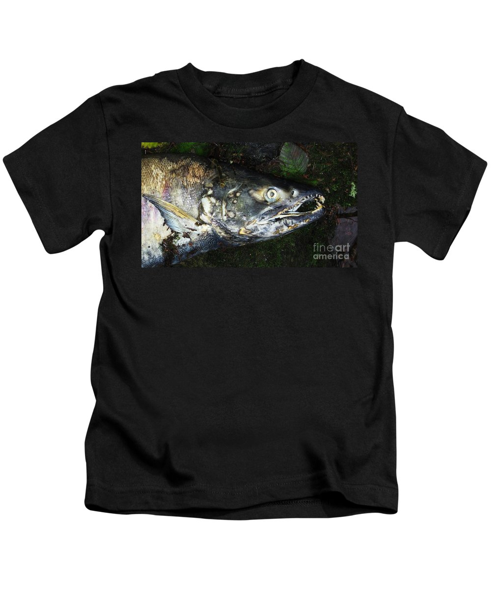 Photography Salmon Death Fish River Malahat Hatch Kids T-Shirt featuring the photograph After Death by Seon-Jeong Kim