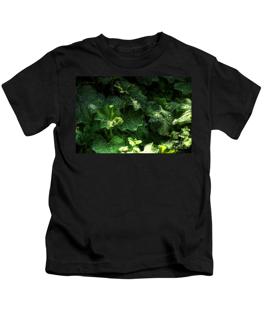 Chris Fleming Kids T-Shirt featuring the photograph After The Rain by Chris Fleming