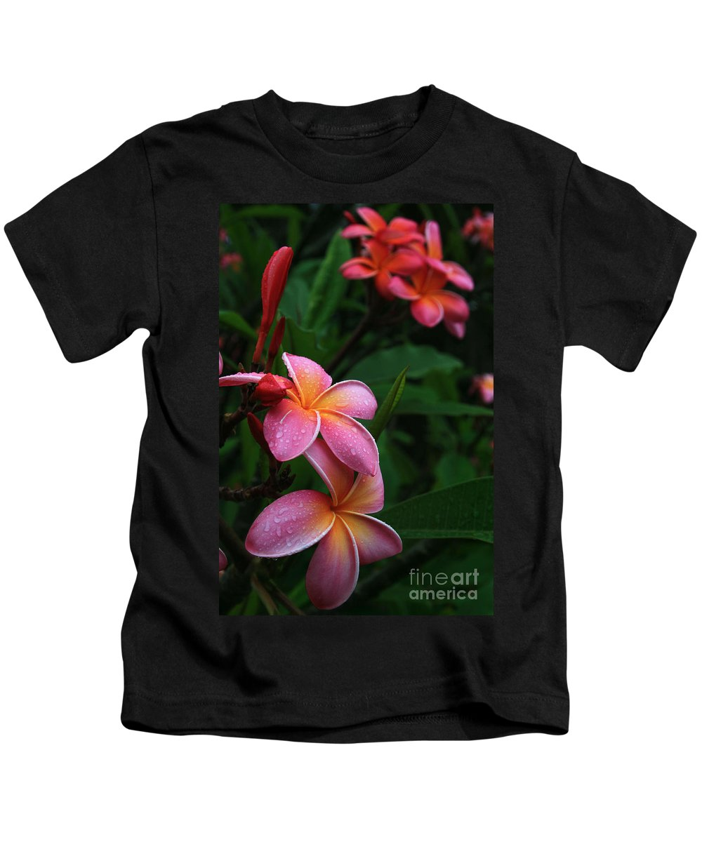 Aloha Kids T-Shirt featuring the photograph Akeakamai Pua Melia Tropical Plumeria by Sharon Mau