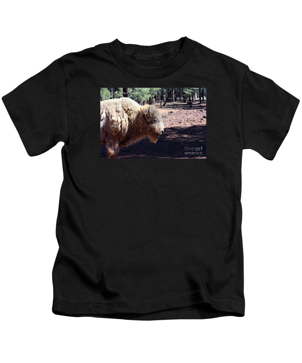 Wildlife Kids T-Shirt featuring the photograph White Bison by Robert Smitherman