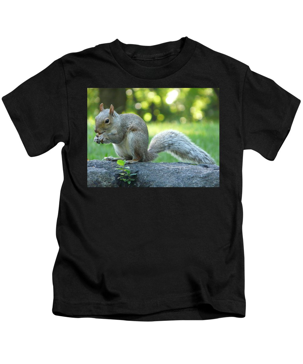 New York Kids T-Shirt featuring the photograph American Squirrel by Valerie Ornstein