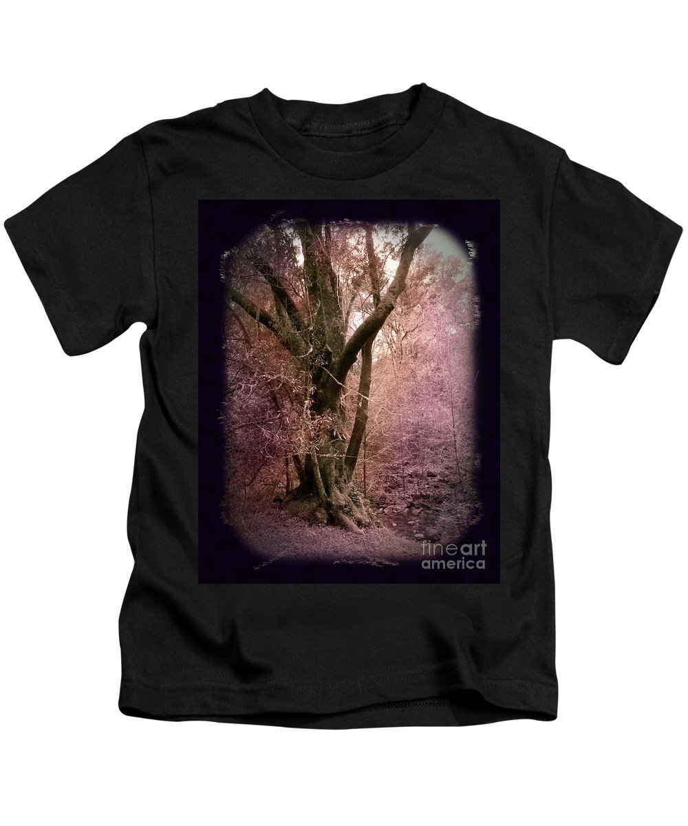 Windy Hill Kids T-Shirt featuring the photograph Ancient Tree By A Stream by Laura Iverson