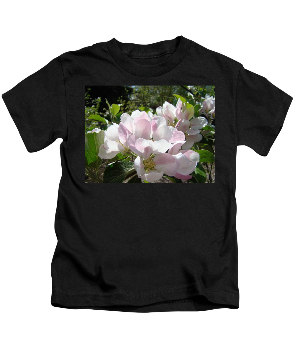 Apple Kids T-Shirt featuring the photograph Apple Tree Blossoms Art Prints Baslee Troutman by Baslee Troutman