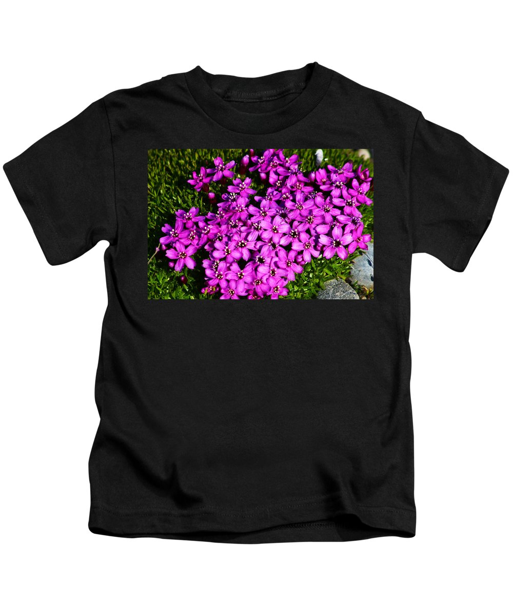 Arctic Kids T-Shirt featuring the photograph Arctic Wild Flowers by Anthony Jones