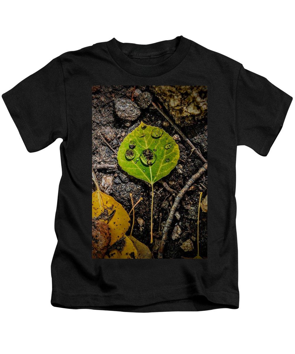 Aspen Leaf Kids T-Shirt featuring the photograph Aspen Dew by Michael Brungardt