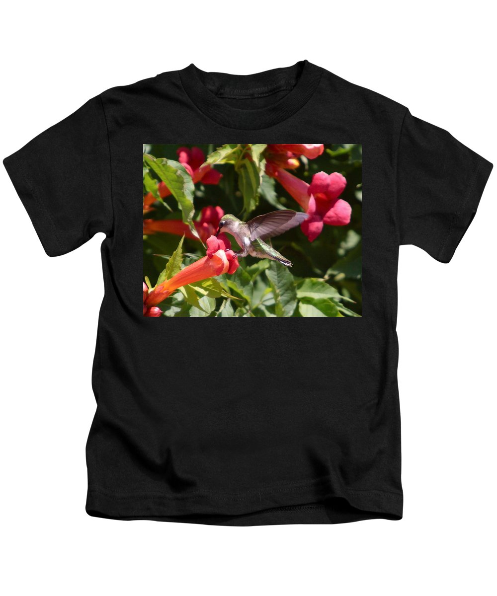 Humming Bird Kids T-Shirt featuring the photograph Asweet Tooth by Robert Pearson