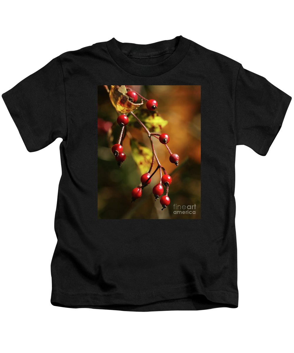 Berries Kids T-Shirt featuring the photograph Autumn Berries by Linda Shafer