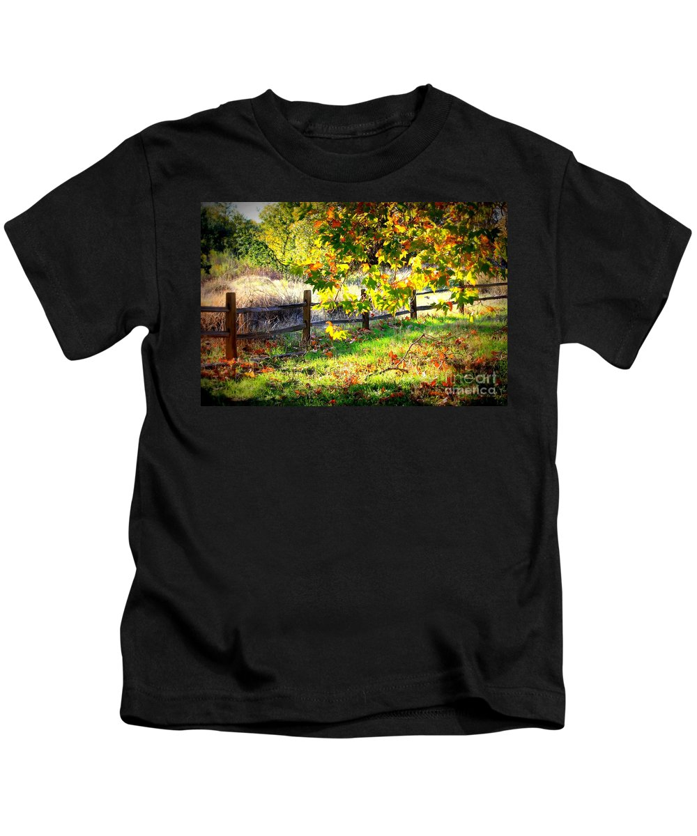 Fences Kids T-Shirt featuring the photograph Autumn Fence by Carol Groenen
