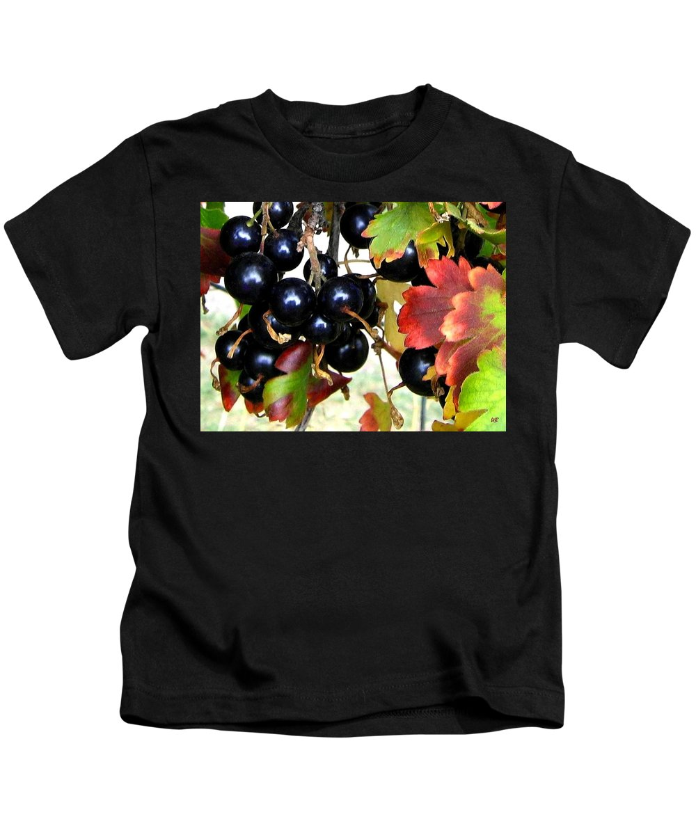 Autumn Kids T-Shirt featuring the photograph Autumn Jostaberries by Will Borden