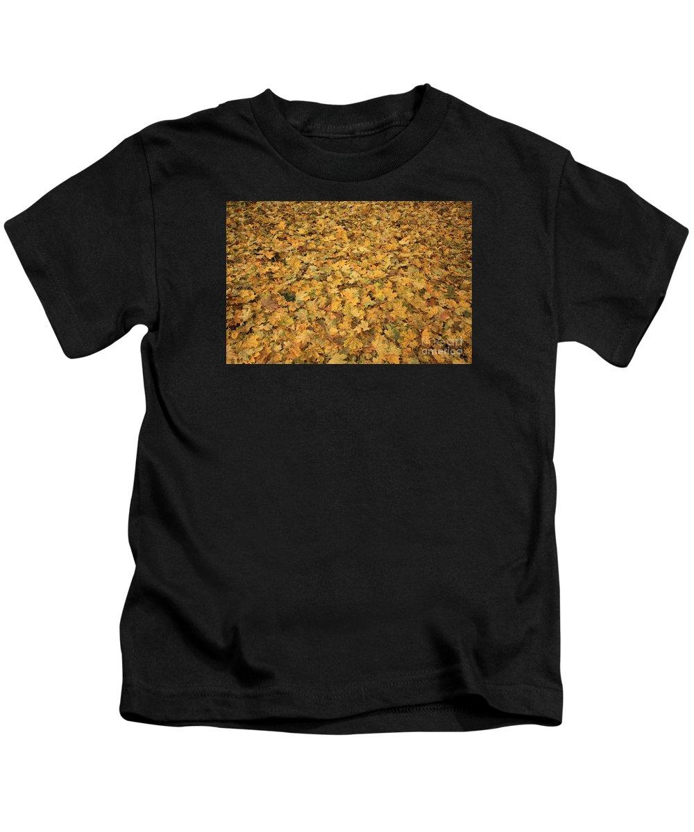 Autumn Kids T-Shirt featuring the photograph Autumn Leaves Canvas by Carol Groenen