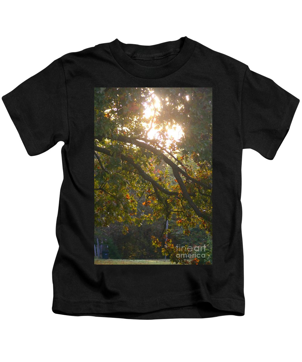 Autumn Kids T-Shirt featuring the photograph Autumn Morning Glow by Nadine Rippelmeyer