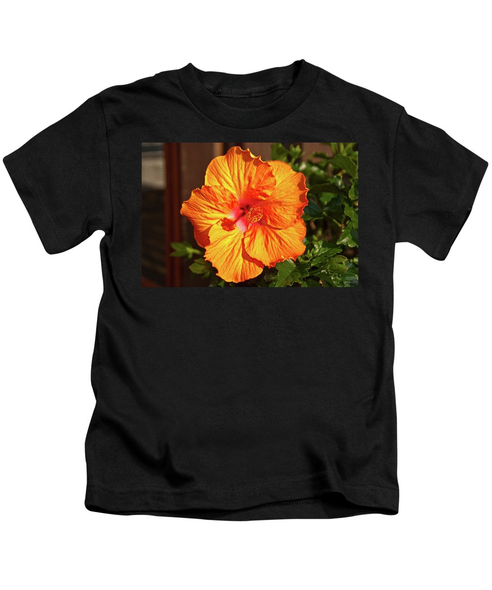 Flowers Kids T-Shirt featuring the photograph B Glavin Garden 11604 by Guy Whiteley