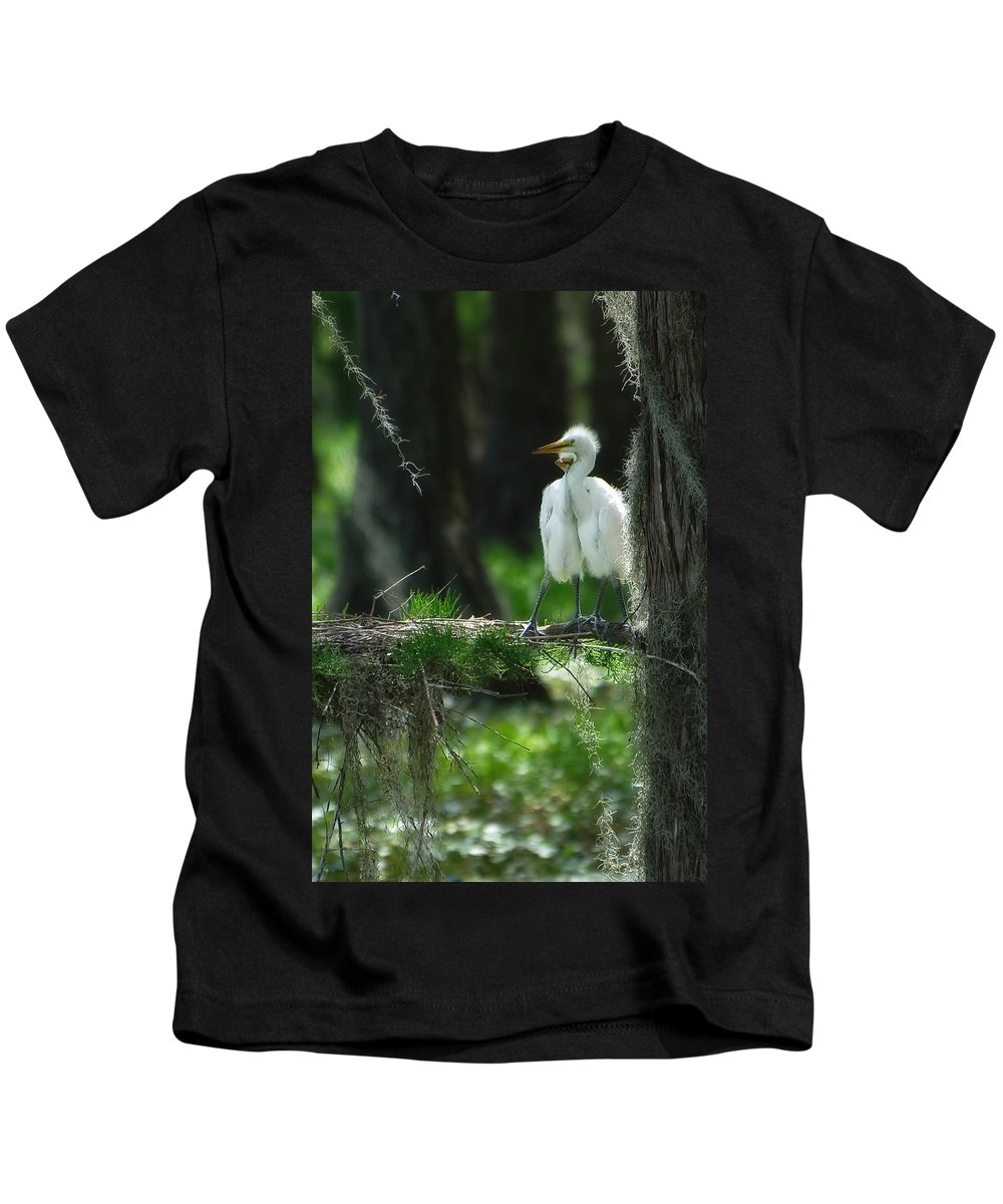 Egret Kids T-Shirt featuring the photograph Baby Great Egrets With Nest by Rich Leighton
