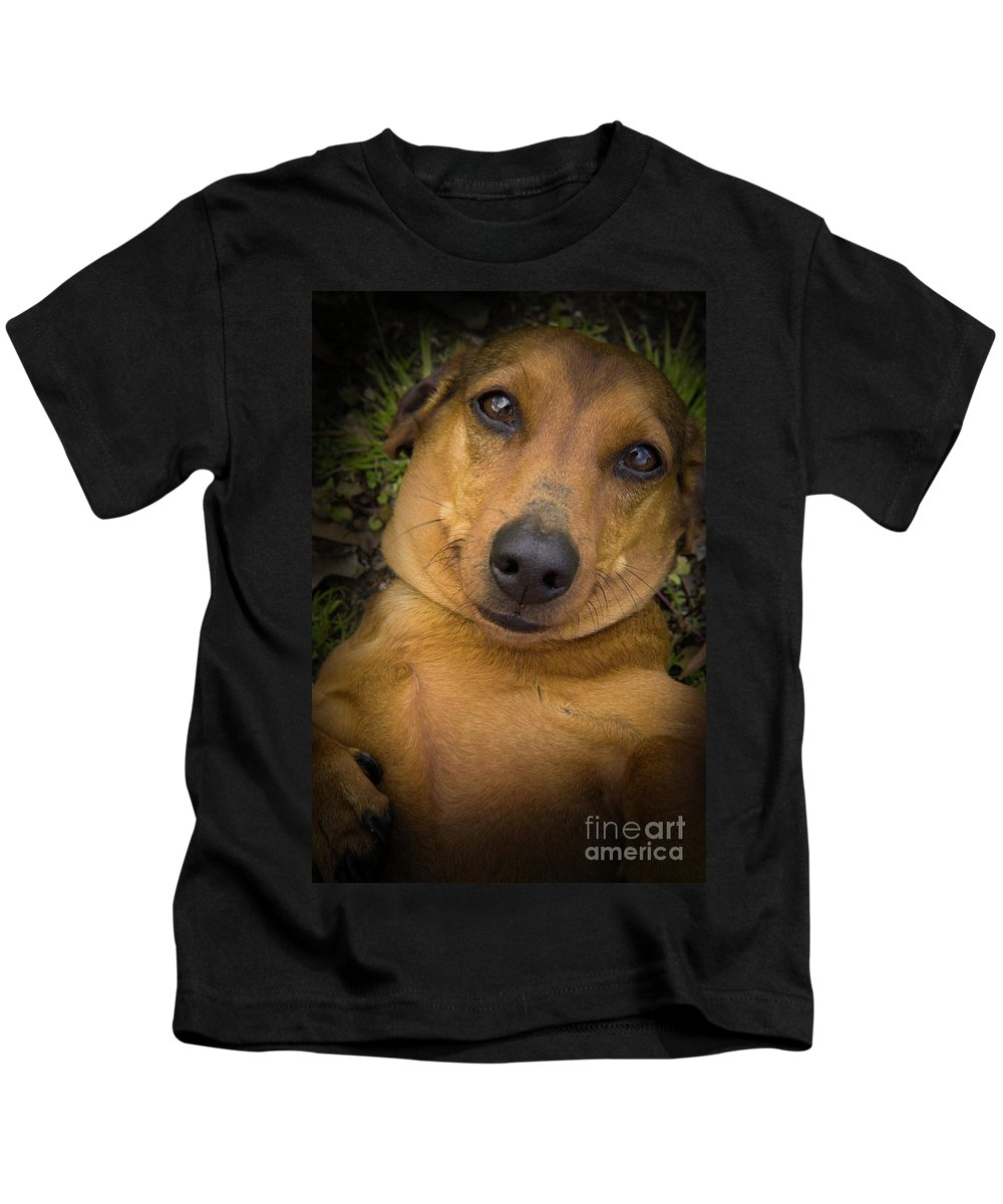 Dog Kids T-Shirt featuring the photograph Baby by Kim Henderson