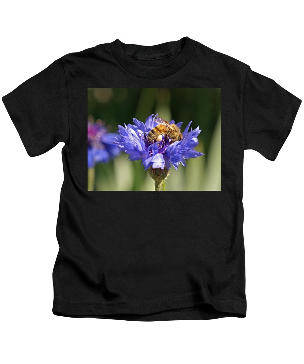 Bee. Flower Kids T-Shirt featuring the photograph Bachelor Button And Bee by Heather Coen