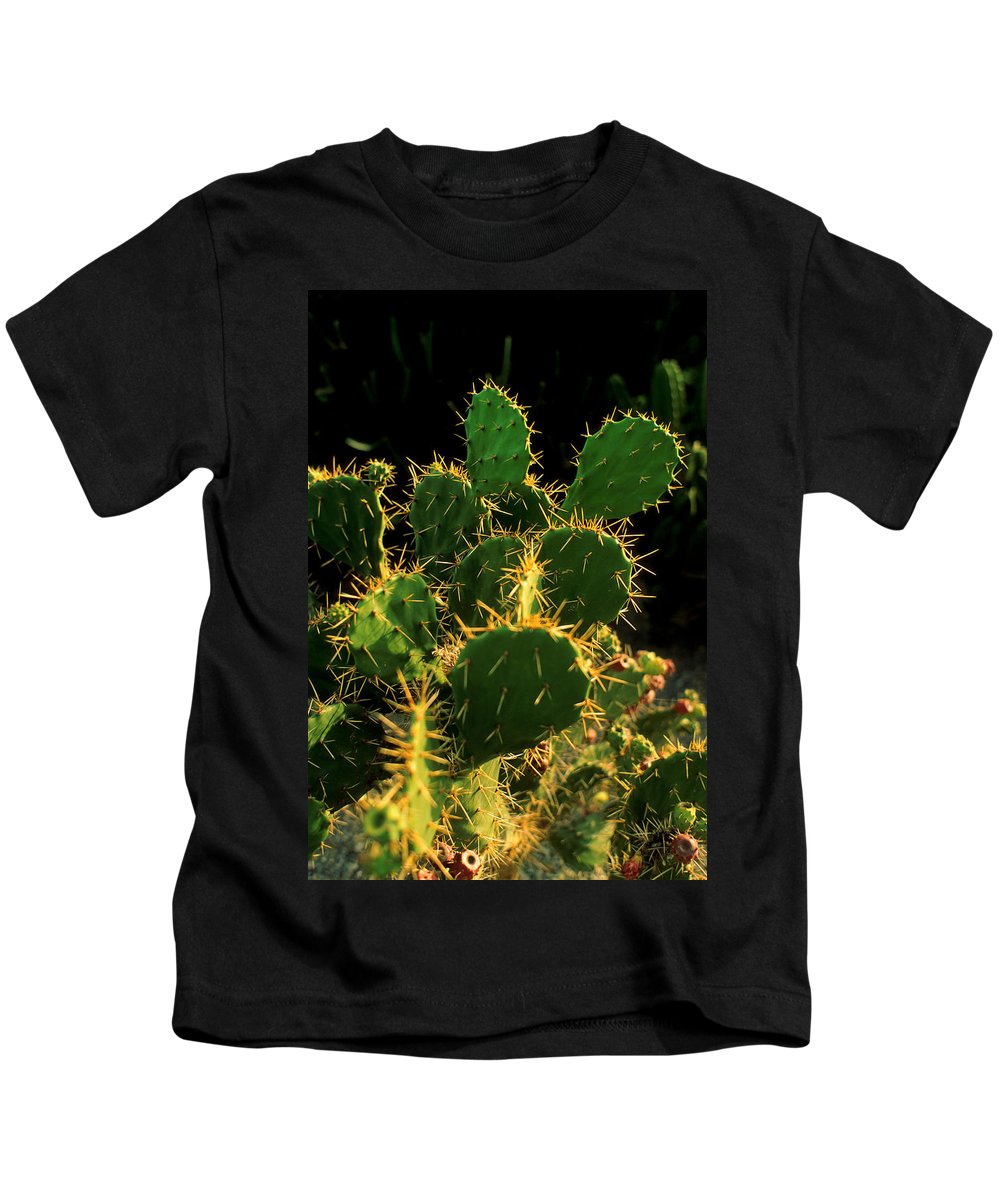 Cactus Kids T-Shirt featuring the photograph Backlit Cacti by Jerry McElroy