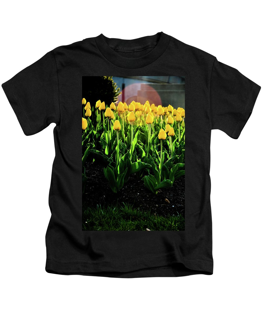 Tulips Kids T-Shirt featuring the photograph Backlit Tulips by Scott Sawyer