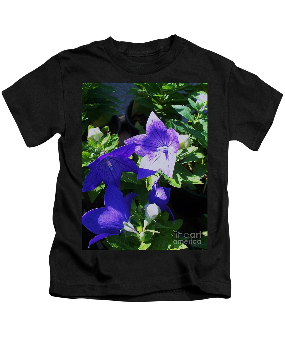Landscapes Kids T-Shirt featuring the photograph Baloon Flower by Eric Schiabor