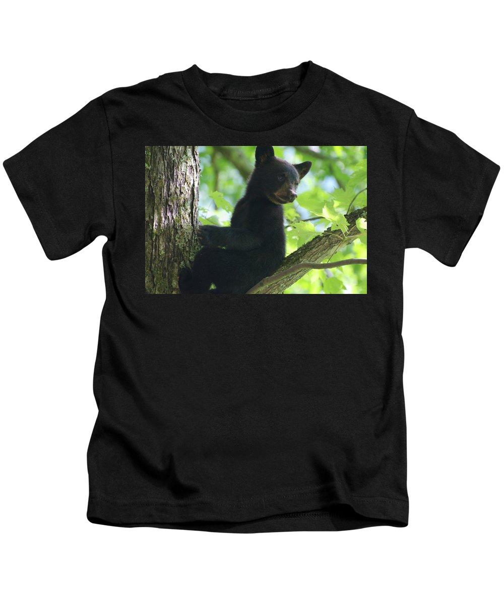 Bear Photo Kids T-Shirt featuring the photograph Bear Cub In Tree by Deborah M Rinaldi