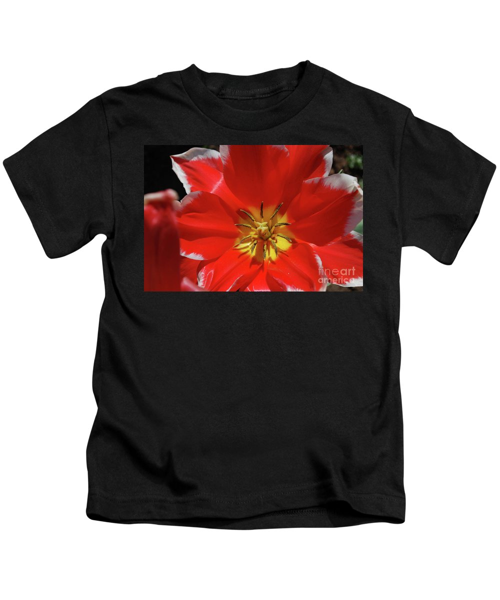 Tulip Kids T-Shirt featuring the photograph Beautiful Macro Of A Red Blooming Tulip by DejaVu Designs
